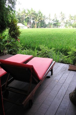 Bali T House: Deck chair overlooking the paddy field
