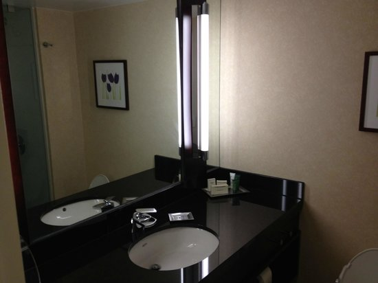 Hilton Charlotte Center City: Bathroom