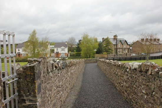 Carrigeen Castle: Great View