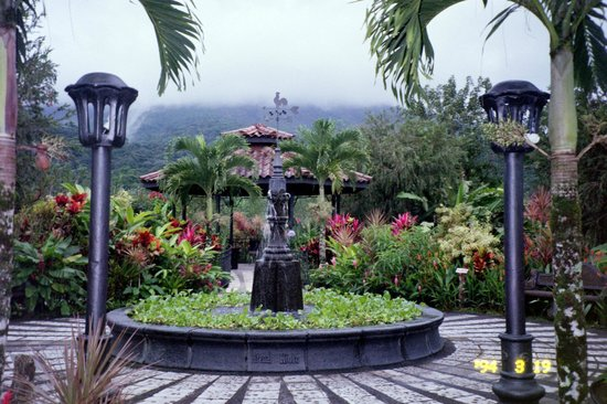 Arenal Kioro: The gardens (the volcano in the background shrouded in mist)