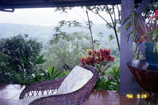 Arenal Kioro Suites & Spa: View of the forest from the Hotel patio