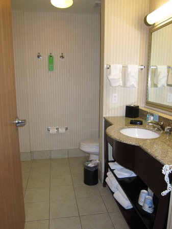 Hampton Inn & Suites Gallup: Bathroom