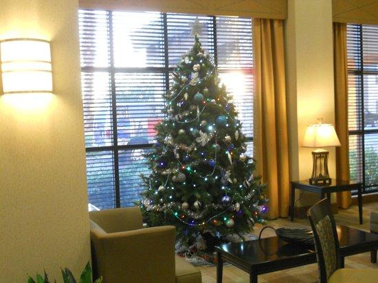 格倫代爾/韋斯特蓋特恒庭飯店及套房照片