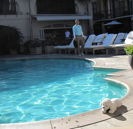 Beverly Wilshire Beverly Hills (A Four Seasons Hotel): by the pool