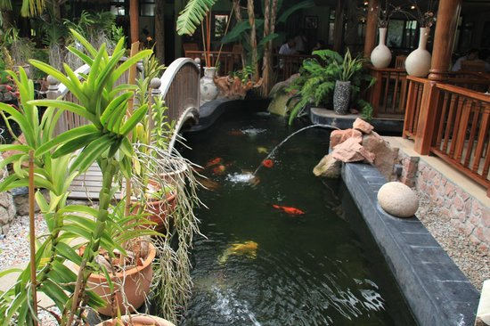 Le Duc de Praslin: pool with carps