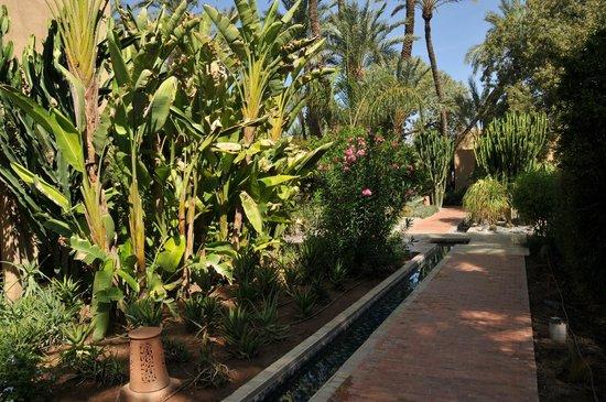 Club Med Marrakech le Riad : Site