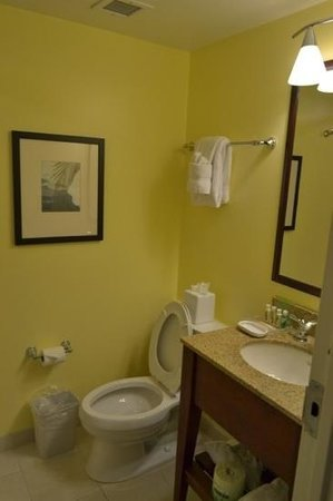 Holiday Inn Orlando – Disney Springs Area : bathroom1