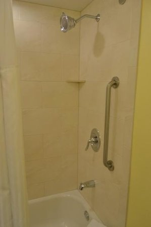 Holiday Inn Orlando – Disney Springs Area: the shower