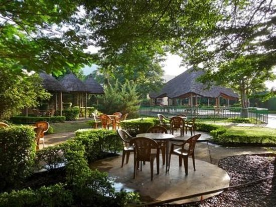 Hotel Le Baobab: Garden and cultural space