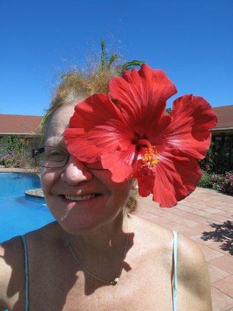 Hotel Puku Vai: gepflegter Garten ums Pool