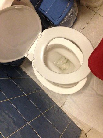 Athena Hotel : broken toilet seat that wasnt right size