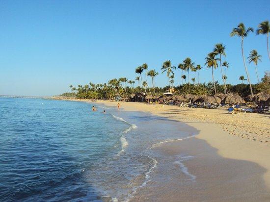 Viva Wyndham Dominicus Beach : la spiaggia del villaggio