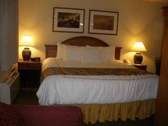 BEST WESTERN Georgetown Hotel & Suites: Well appointed Room