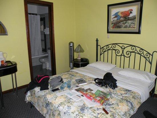 Hotel Fleur de Lys: Chambre
