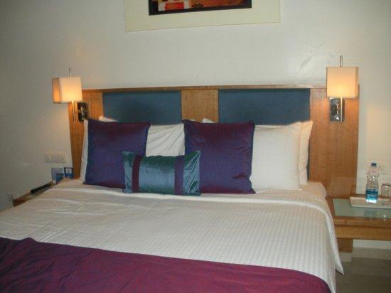 Fortune Inn Sree Kanya: standard room