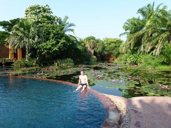 Anantara Hua Hin Resort: Lagoon Pool