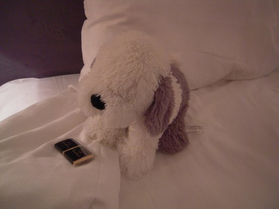 Waterhead Hotel: cute bed pet