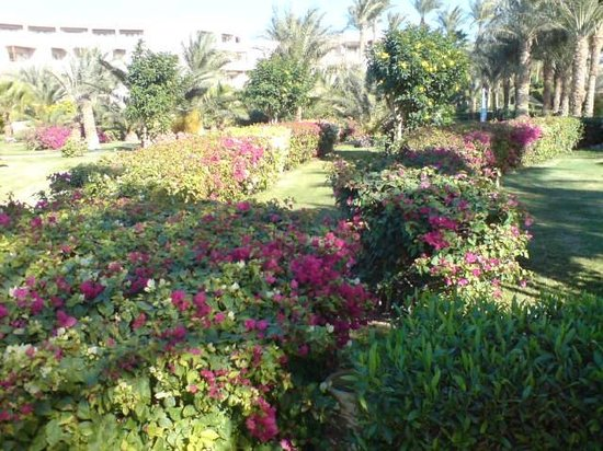 Fort Arabesque Resort, Spa & Villas: beautiful gardens