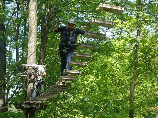 Barrie, Canadá: tree-trekking - what fun
