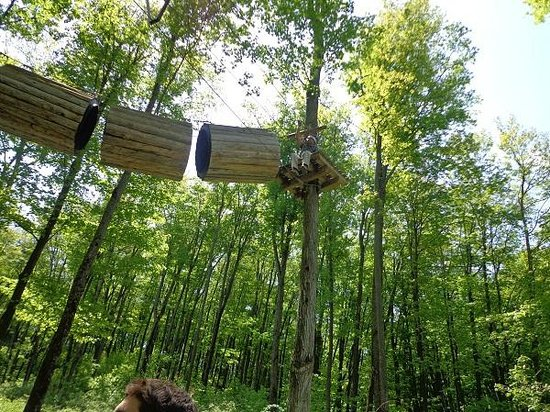 Treetop Trekking: Only one to reach the top-most line
