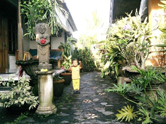 Nirwa Ubud Homestay: 生き生きしている庭