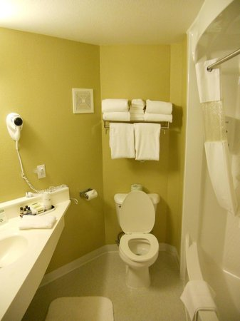 Rodeway Inn and Suites: Our bathroom