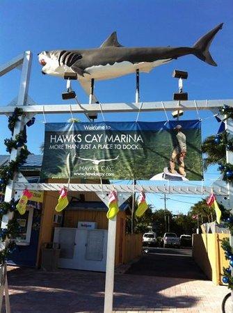Hawks Cay Resort: marina close by to room