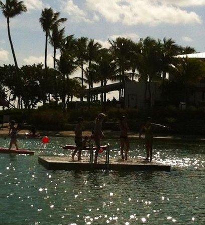 Hawks Cay Resort: endless fun in the lagoon
