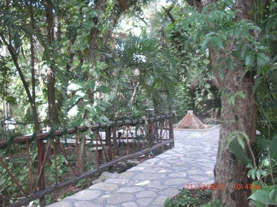 Hotel El Tukan: path from our room to reception