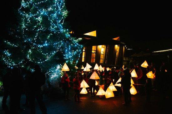 Eden Project Lantern Parades Form The Centre Piece Of Edens Winter Festival