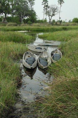 Delta Camp: Mokoros