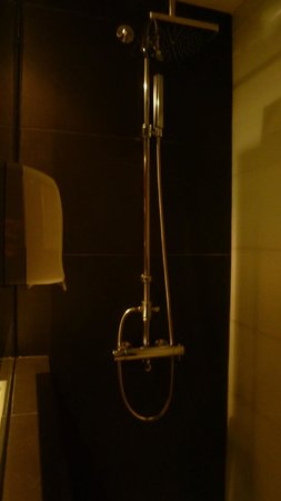 Best Western Plus Hotel Alfa Aeropuerto : Shower