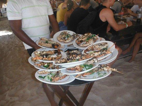 Viva Wyndham Dominicus Beach : Aragoste a 10 euro sull'isola Saona!!