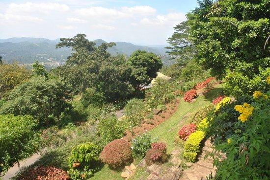 Amaya Hills: Gardens