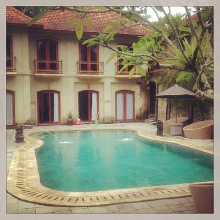 Hotel Villa-Ubud: pool