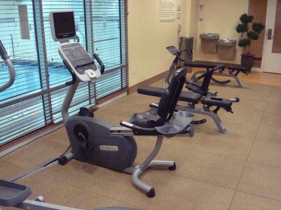 Hilton Garden Inn Laramie: Gym
