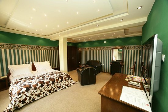 Hotel Gymnas Novi Sad: Luxury suite