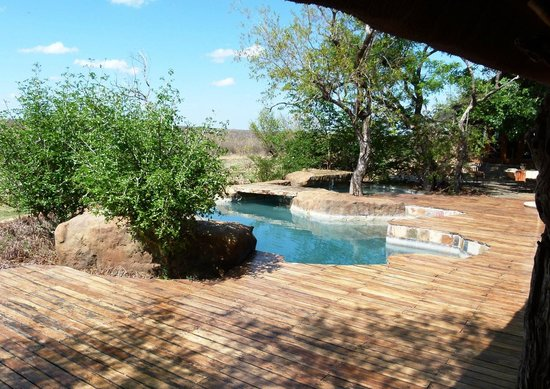 Rhulani Safari Lodge: Lodge Pool
