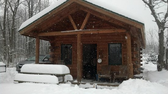 Finger Lakes Mill Creek Cabins: Cozy Cabin in the middle of a storm!