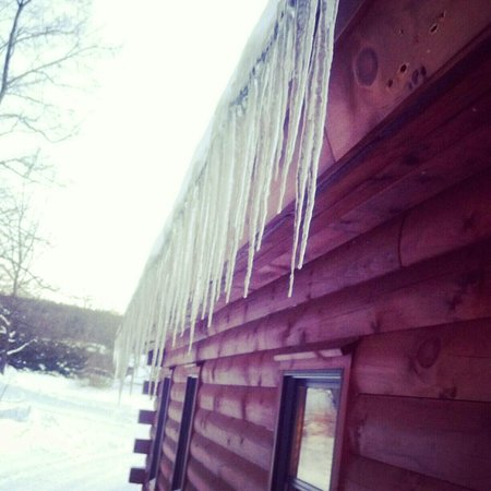 Finger Lakes Mill Creek Cabins: Icicles on a cold December day