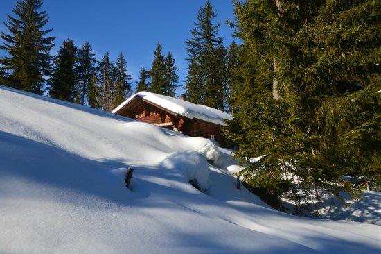 Lenkerhof gourmet spa resort : Ausflug auf den Bettelberg direkt vor dem Hotel