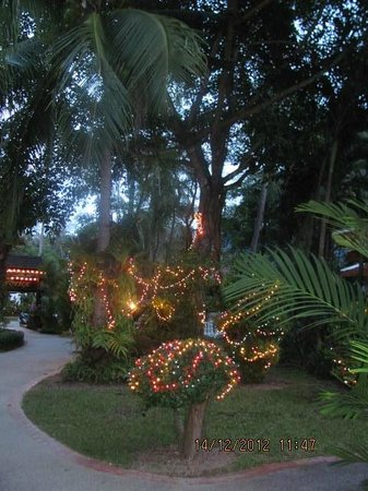 Santhiya Tree Koh Chang Resort: Weihnachtsdeko im Panviman