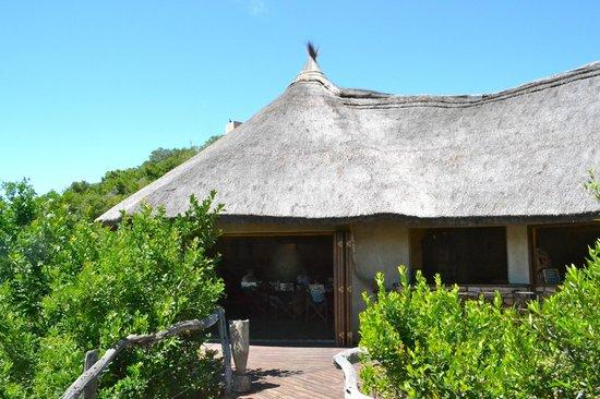 Idwala Game Lodge: view of lodge