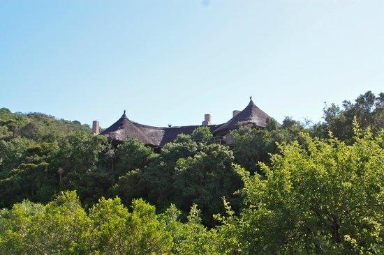 Idwala Game Lodge: The Lodge