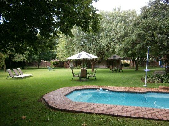 Safari Club: Tuin met (klein) zwembad