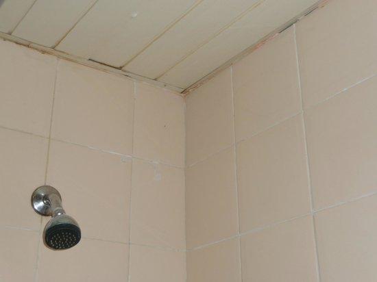 Coral Costa Caribe Resort & Spa: état du plafond salle de bain