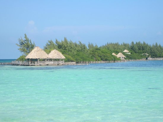 Belizean Dreams Resort: Coco Plum