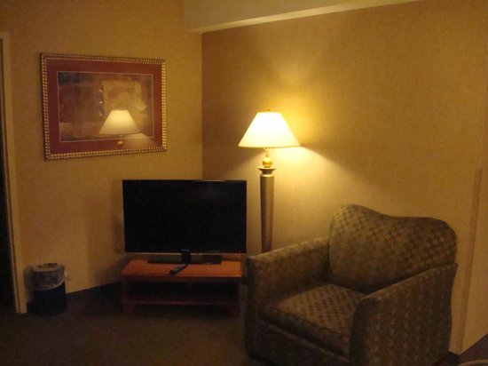 Holiday Inn Rapid City - Rushmore Plaza: Room 428