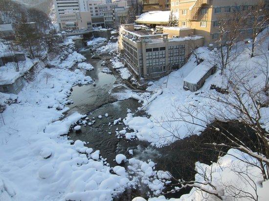 Shogetsu Grand Hotel : 部屋からも、休憩室からも渓谷を一望できます