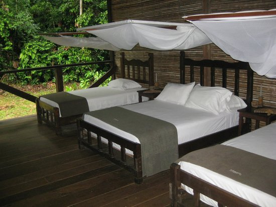 Refugio Amazonas: family room (2 singles and double)
